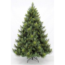 Ponderosa pine 7ft christmas tree (only 1 left)